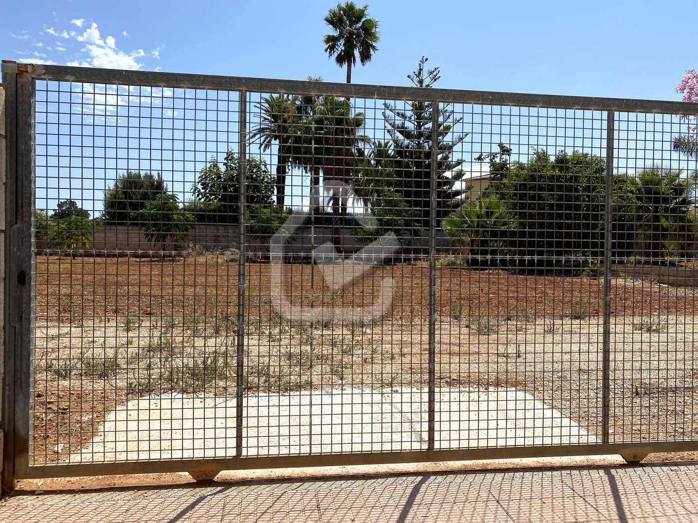 Photo  number 5: Land / Ground in Sale in Ondara, Area Centro. Ref. 5-36-14905