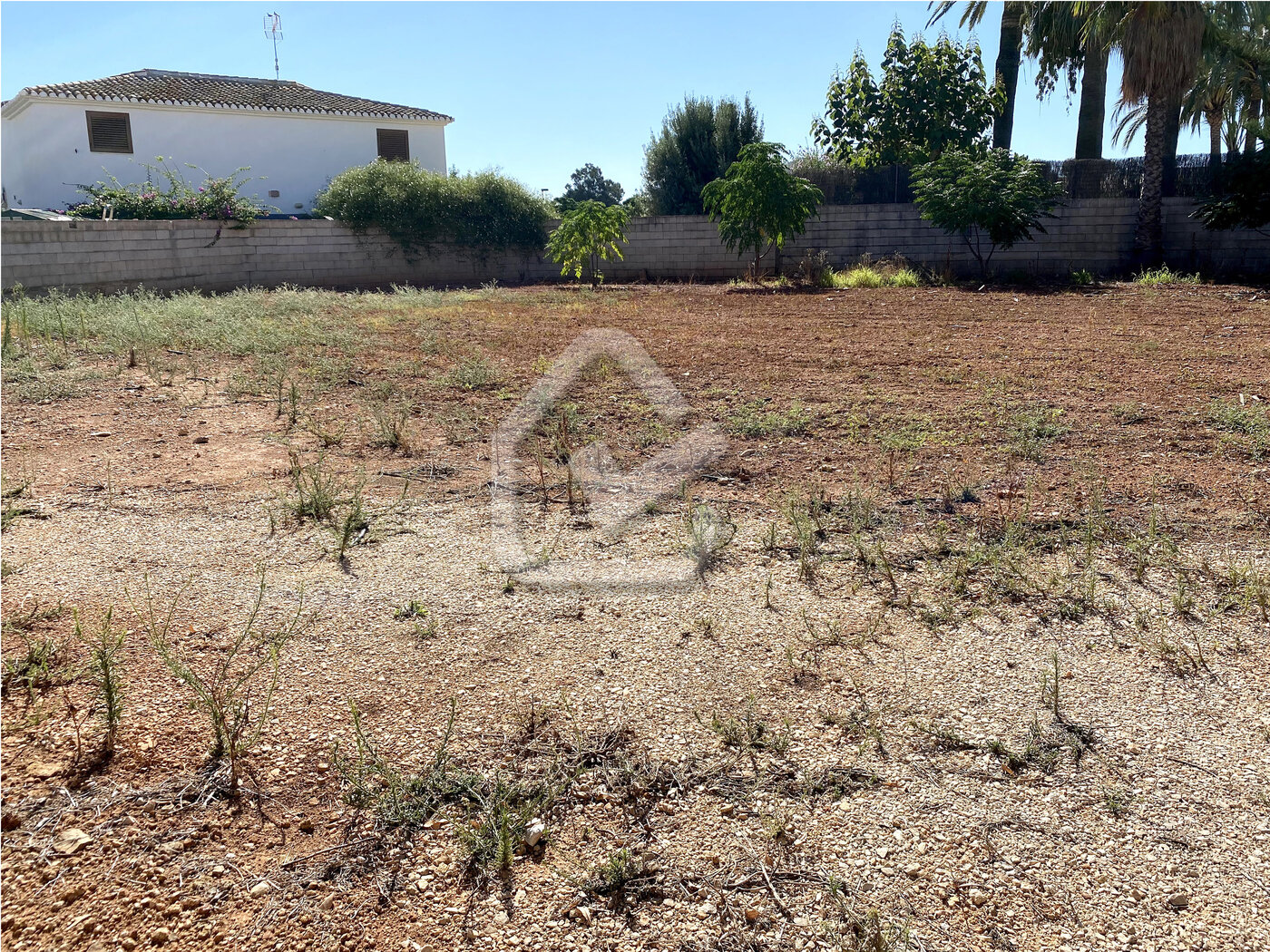 Photo  number 3: Land / Ground in Sale in Ondara, Area Centro. Ref. 5-36-14905